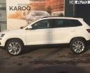Skoda-Karoq-2.0 TDI 150 ch SCR Business